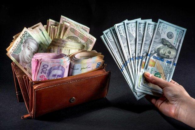 деньги, доллары, гривны