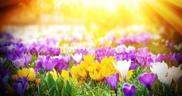 Погода в Украине 29 марта