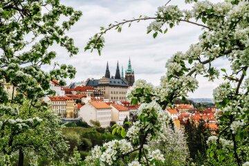Куда поехать на майские праздники, весна, отдых в европе