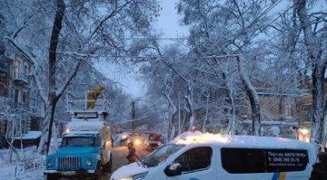 """Непогода обрушила свой гнев на Одессу, видео: """"сотни упавших деревьев, оборванных сетей и повалены опоры"""
