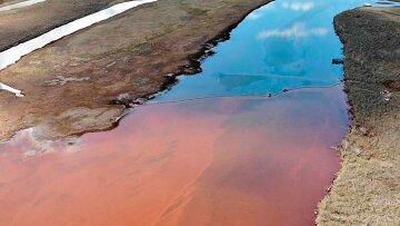 "Масштабная катастрофа произошла в РФ, видео: ""20 тонн нефти попало в..."""