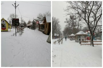 """""""Взимку місто не впізнати"""": снігопад засипав український курорт, замети прикрашають кожну лавочку, фото"""