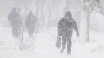 снег, метель, ветер, шквалы