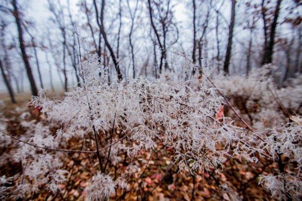 Зима відмовляється відпускати Дніпро, мороз накриє область: коли чекати непогоди