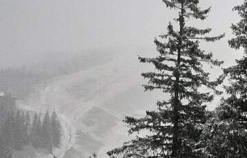 """""""10 сантиметров снега"""": зима застала украинцев врасплох, первые кадры непогоды"""
