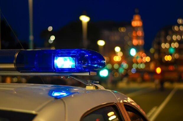 мигалки, полиция