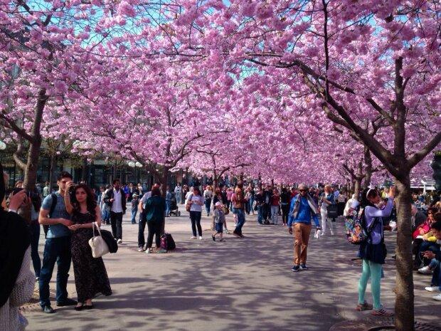 весна, щастя, радість, люди
