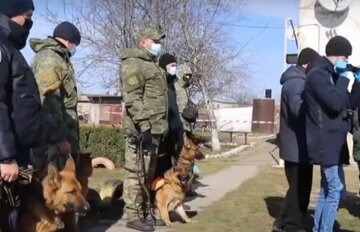 """Жорстока розправа підлітками стривожила Одещину, люди на межі: """"влада побоюється повторення..."""""""
