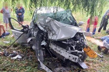 Авто з 12 людьми в салоні зім'яло від удару: все закінчилося трагічно, кадри ДТП