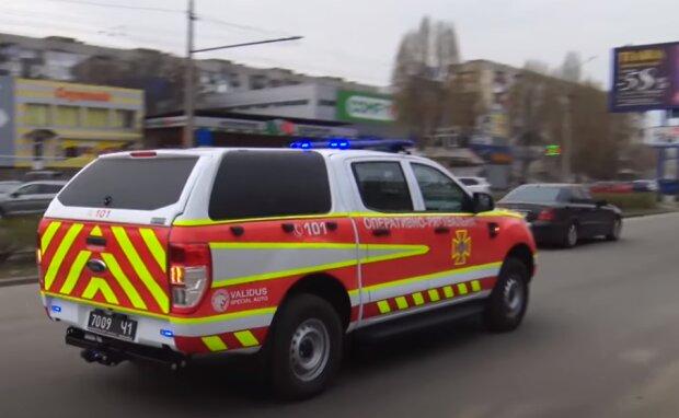 Женщина заперла в машине двухлетнего ребенка и собаку, примчались спасатели: фото и подробности ЧП