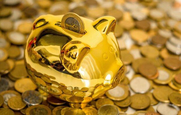 китайский гороскоп на 2019 год, свинья копилка, деньги