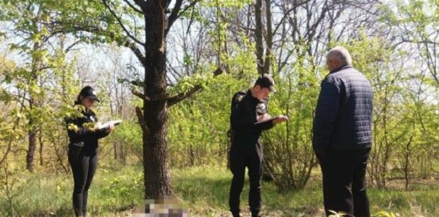 Одесситов начнут штрафовать в лесу:  в каких случаях и как будут наказывать