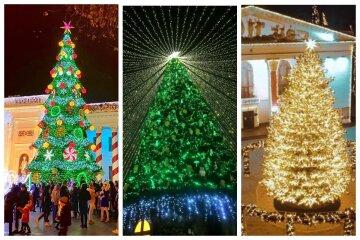 Главная елка Одессы попала в топ-5 рейтинга Украины: как выглядят самые красивые новогодние деревья