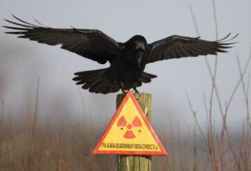 Чернобыль, Припять