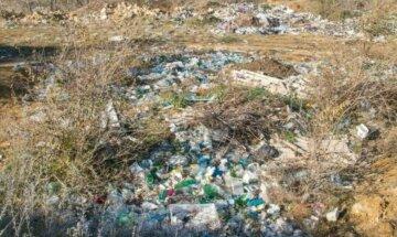 Екологи б'ють на сполох через забруднення: у Харкові в річку вилили невідому речовину, кадри
