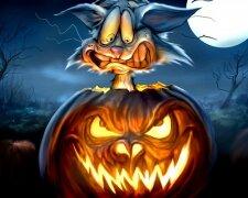 funny-halloween-cat-and-pumpkin-wallpaper-71183