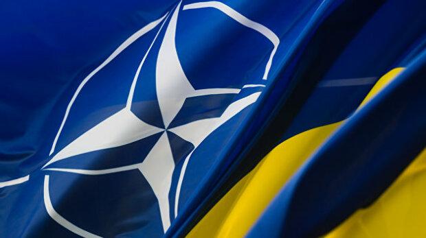 НАТО хоче, щоб Україна реформувала СБУ: Не підривайте довіру партнерів