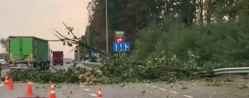 Ураган атакував Київ, затоплені вулиці і повалені дерева: відео масштабних руйнувань