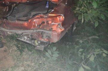 Авто зацепило женщину и девочку: в Харькове машина слетела в кювет, кадры