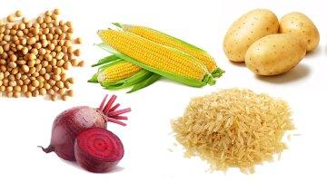 Что будет с организмом, если часто есть ГМО-продукты: ответ специалиста-генетика