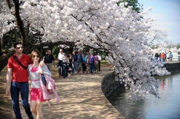 весна, люди