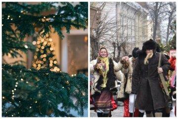 Сойкин день 11 декабря: традиции и что категорически нельзя делать в этот праздник