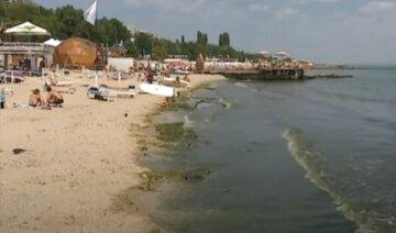 """В Одессе просят воздержаться от купания в море: """"в акваторию попало много..."""""""