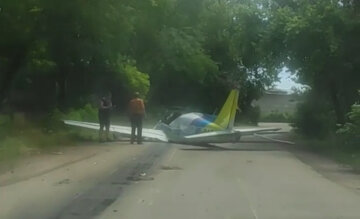 «Швидка їхала 20 хвилин»: спливли кричущі подробиці аварії літака в Одесі