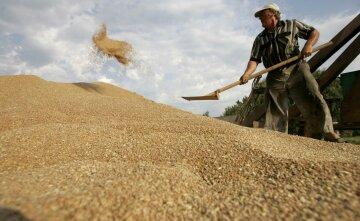 Экспорт-зерновых-Украина