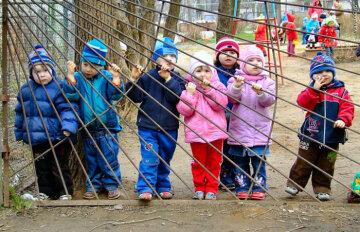 детский сад,