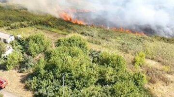 Масові пожежі спалахнули в Харківській області, фото: є жертви