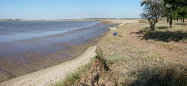 Ученые сделали открытие мирового уровня на одесском пляже (фото)