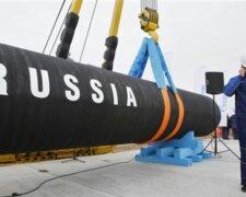 Мы все едины в части поддержки Украины: США раскритиковали строительство «Северного потока-2»