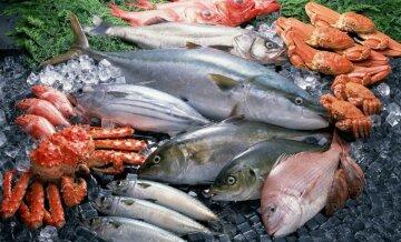 Вызывает рак: ученые ошарашили новым открытием о блюдах из рыбы