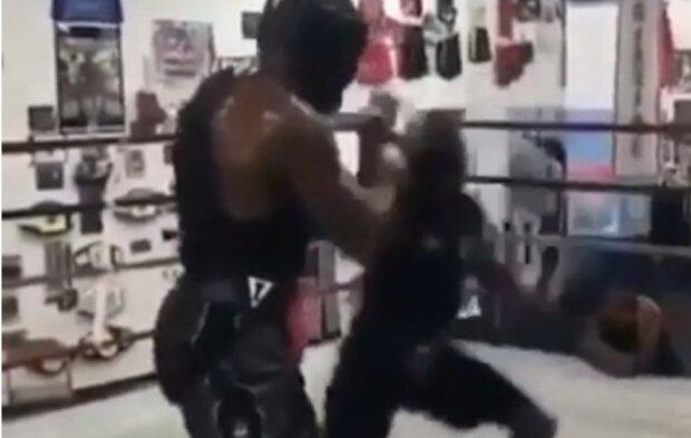 """Мелкий боксер одним ударом """"уничтожил"""" соперника-гиганта, видео: """"Размер имеет значение"""""""