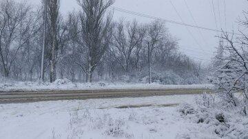 Одеситів приголомшили прогнозом погоди на 29 січня: до яких наслідків призведе снігопад