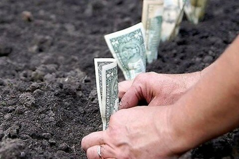 земля, гроші