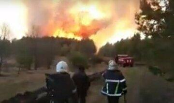 Пожежі в Україні знищили десятки гектарів землі: термінова заява рятувальників