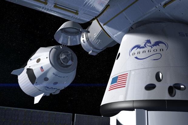 »Дракон» Илона Маска привез из космоса мышей