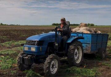 земля, сельское хозяйство, фермер