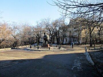 Скелет людини знайдений в центрі Одеси: моторошну знахідку показали очевидці