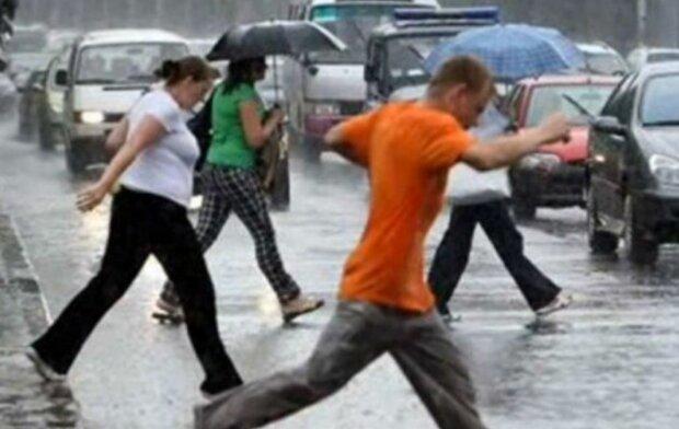 погода, ливень, дождь летом