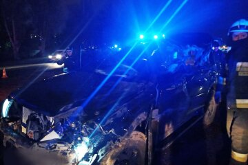 Моторошна ДТП з вантажівкою на українській трасі: рятувальники дістали тіло з салону, кадри