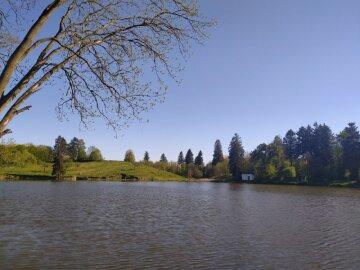 погода, озеро, лето