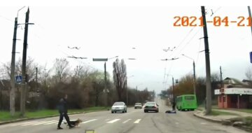 Бежал на маршрутку: харьковчанин попал под колеса на переходе, момент зафиксировала камера