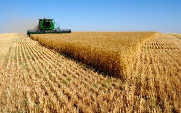Украинский банк выдал кредит под залог зерна