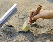 раскопки, архологи