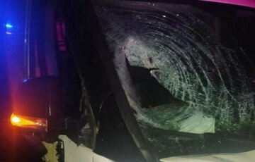 Водитель на элитном авто устроил пьяное ДТП, не стало ребенка: фото фатальной аварии