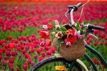 праздники в марте весна
