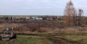 Полчища мерзенних істот атакували Харківську область: з'явилася термінова заява
